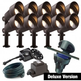 Seedball Bird Mix