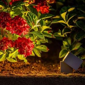 Techmar Arcus 5 Light Deluxe Bundle + Remote