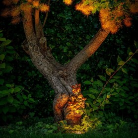 Techmar Albus 5 Light Deluxe Bundle + Timer