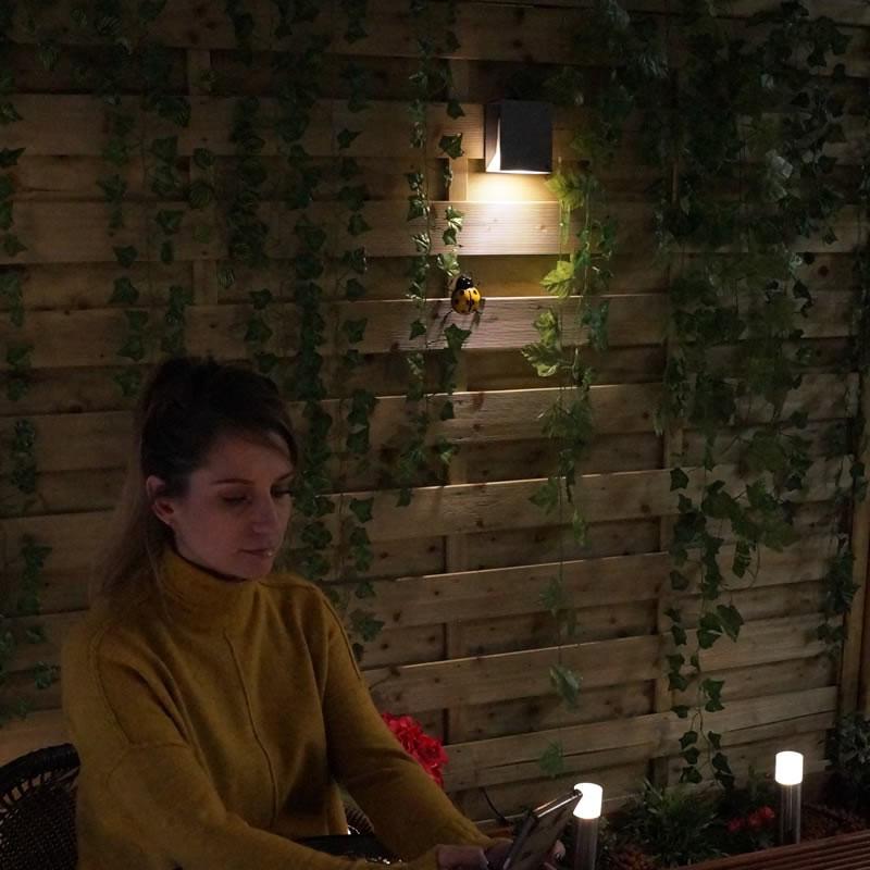 £10 Garden Light Gift Voucher