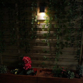 £20 Garden Light Gift Voucher