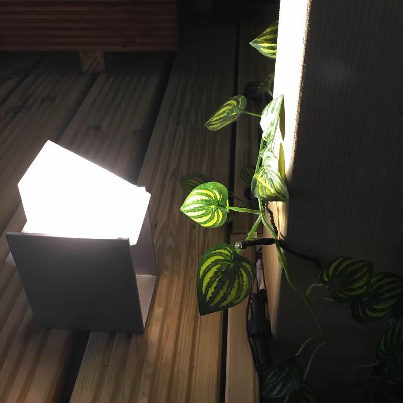 £50 Garden Light Gift Voucher